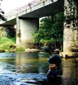20100318133753-pescador.jpg
