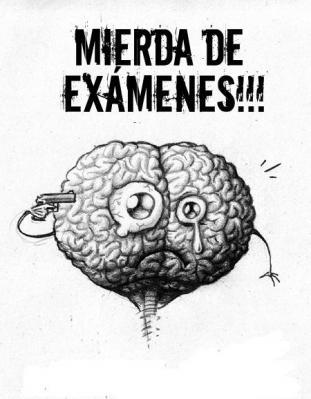 20130226093558-examenes20mierderos2nx3.jpg