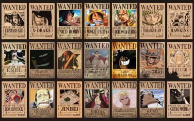20130916134409-one-piece-wanted-posters.jpg