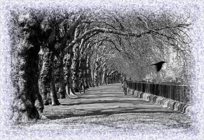 20100222183625-soledad.jpg
